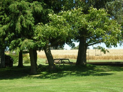 About the Farm. VIEW PICNIC TABLE